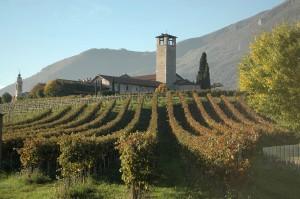 Bergomi - Immobili in Valcalepio