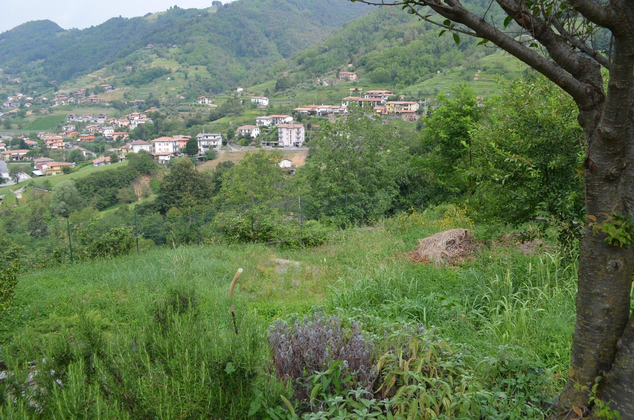 Bergomi immobiliare terreno edificabile for Terreno edificabile